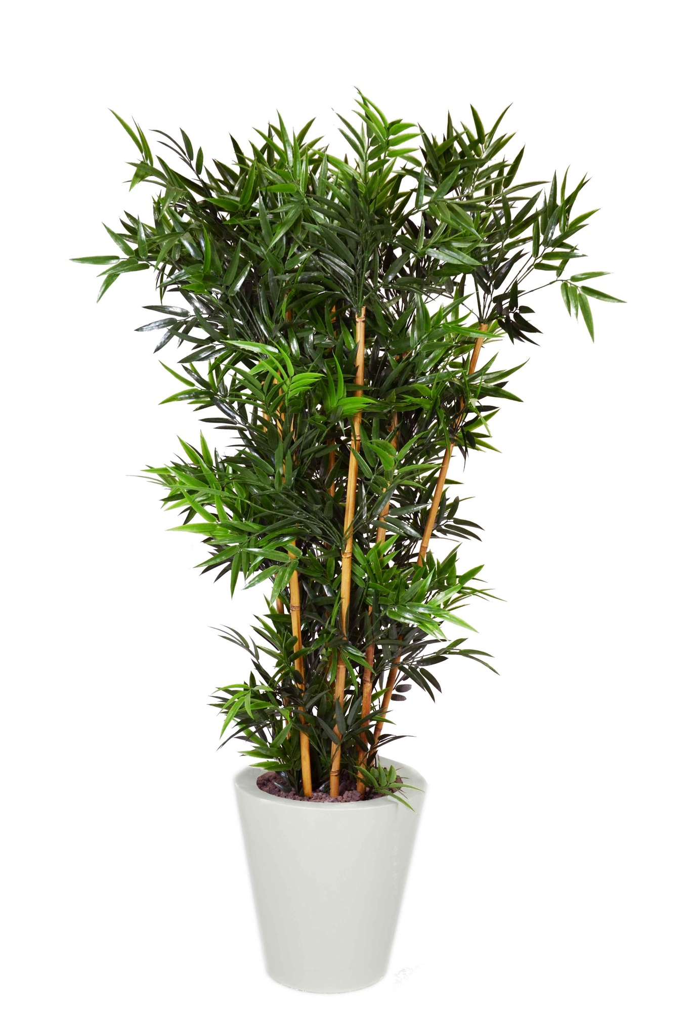 Bamboo piante artificiali da esterno interno viridium for Piante finte da esterno