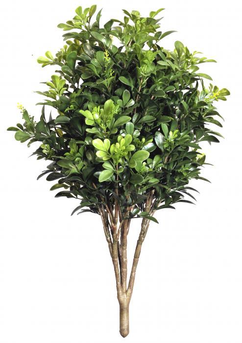 Piante Artificiali Da Esterno : Buxus d piante artificiali da esterno interno viridium