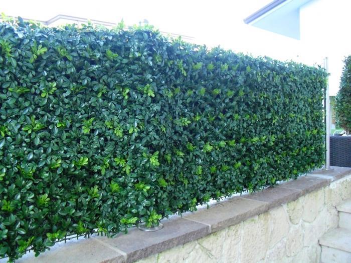 Siepe di buxus siepi artificiali viridium - Siepe per giardino ...