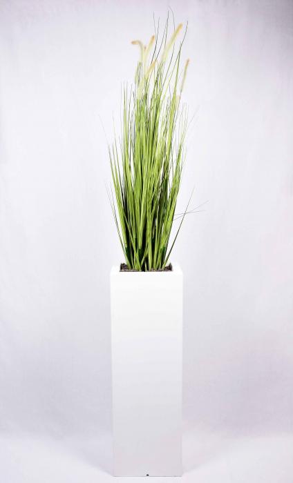Pampas piante artificiali da esterno interno viridium for Erba della pampas riproduzione